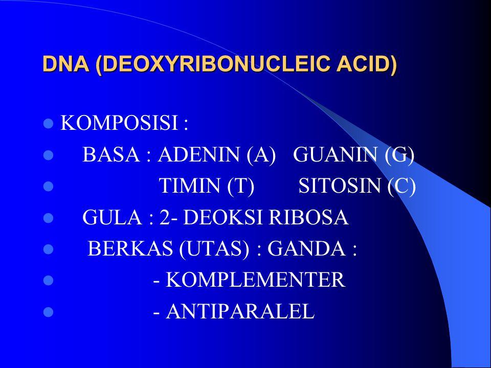 DNA (DEOXYRIBONUCLEIC ACID) KOMPOSISI : BASA : ADENIN (A) GUANIN (G) TIMIN (T) SITOSIN (C) GULA : 2- DEOKSI RIBOSA BERKAS (UTAS) : GANDA : - KOMPLEMEN