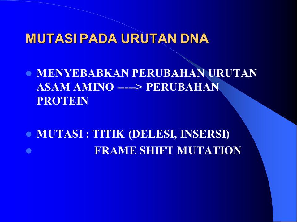 MUTASI PADA URUTAN DNA MENYEBABKAN PERUBAHAN URUTAN ASAM AMINO -----> PERUBAHAN PROTEIN MUTASI : TITIK (DELESI, INSERSI) FRAME SHIFT MUTATION