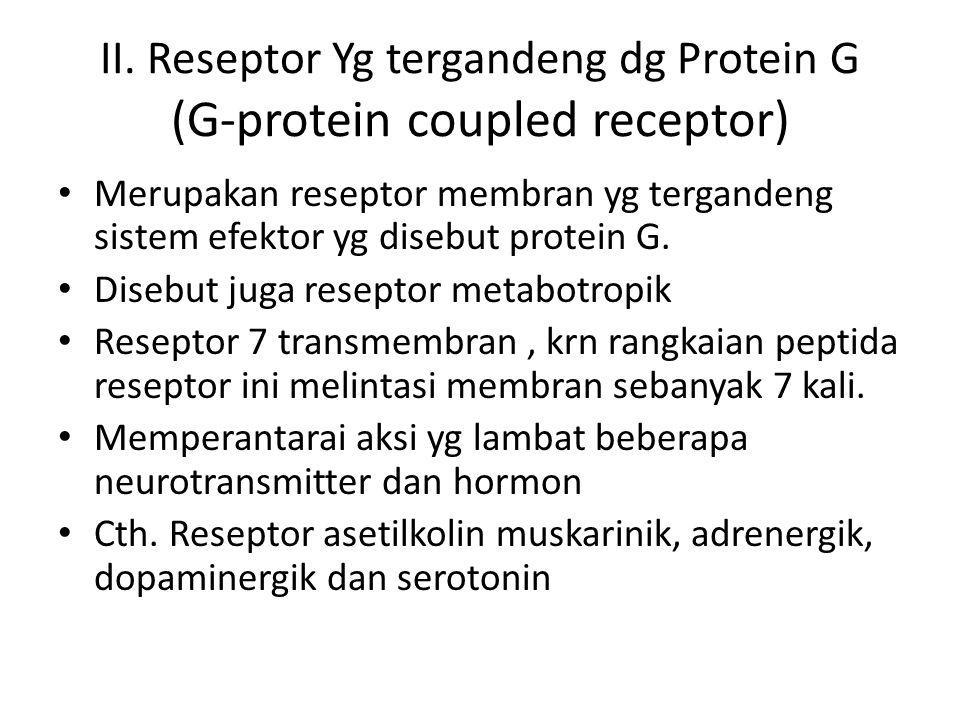 II. Reseptor Yg tergandeng dg Protein G (G-protein coupled receptor) Merupakan reseptor membran yg tergandeng sistem efektor yg disebut protein G. Dis