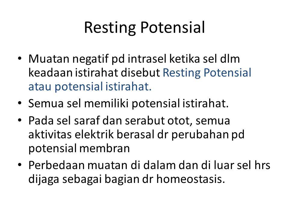 Resting Potensial Muatan negatif pd intrasel ketika sel dlm keadaan istirahat disebut Resting Potensial atau potensial istirahat. Semua sel memiliki p