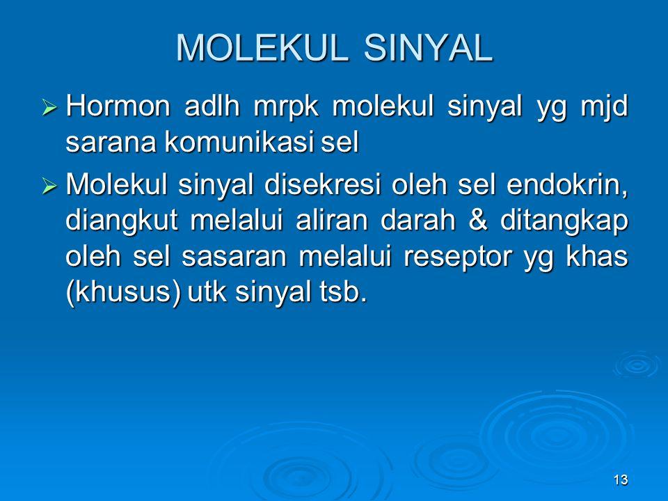 13 MOLEKUL SINYAL  Hormon adlh mrpk molekul sinyal yg mjd sarana komunikasi sel  Molekul sinyal disekresi oleh sel endokrin, diangkut melalui aliran