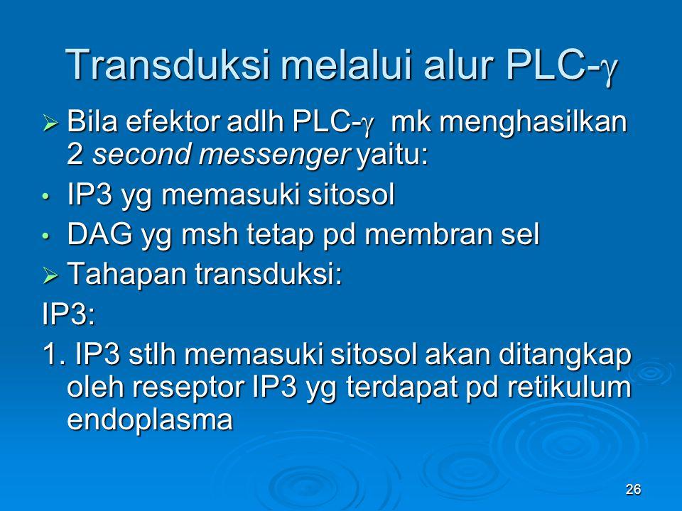 26 Transduksi melalui alur PLC-   Bila efektor adlh PLC-  mk menghasilkan 2 second messenger yaitu: IP3 yg memasuki sitosol IP3 yg memasuki sitosol