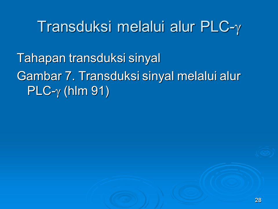 28 Transduksi melalui alur PLC-  Tahapan transduksi sinyal Gambar 7. Transduksi sinyal melalui alur PLC-  (hlm 91)