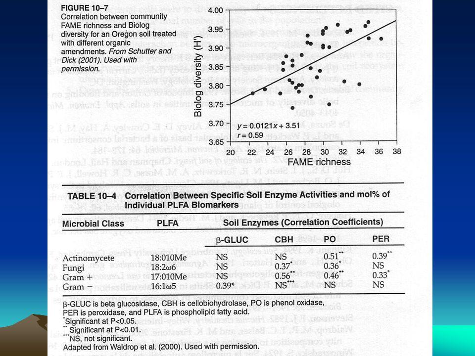 DNA Array Metode DNA array digunakan untuk identifikasi isolat Phytium spp dan Phytophthora spp yg belum diketahui.