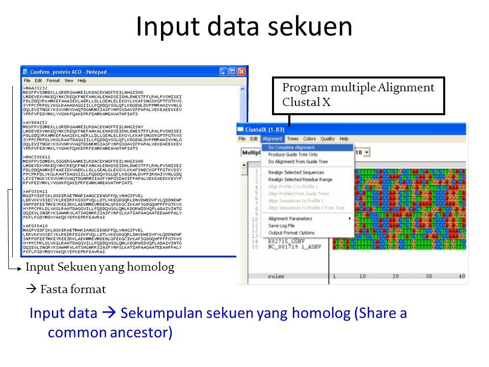 Input data sekuen Input data  Sekumpulan sekuen yang homolog (Share a common ancestor) Input Sekuen yang homolog  Fasta format Program multiple Alignment Clustal X