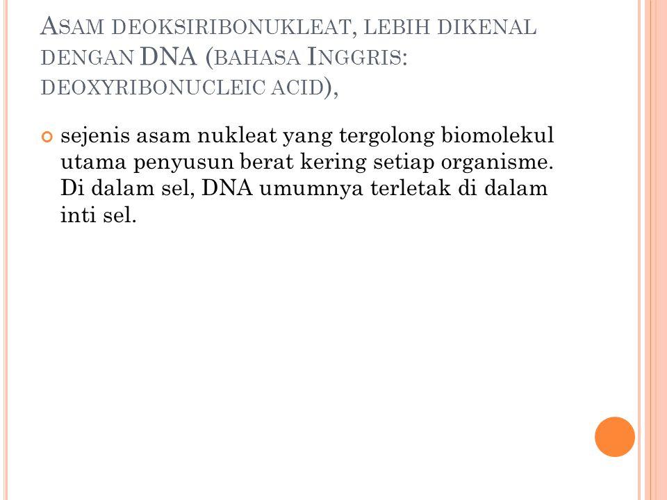 A SAM DEOKSIRIBONUKLEAT, LEBIH DIKENAL DENGAN DNA ( BAHASA I NGGRIS : DEOXYRIBONUCLEIC ACID ), sejenis asam nukleat yang tergolong biomolekul utama pe