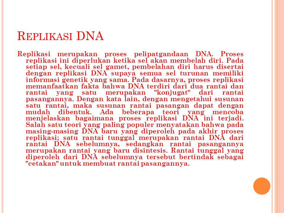 R EPLIKASI DNA Replikasi merupakan proses pelipatgandaan DNA. Proses replikasi ini diperlukan ketika sel akan membelah diri. Pada setiap sel, kecuali