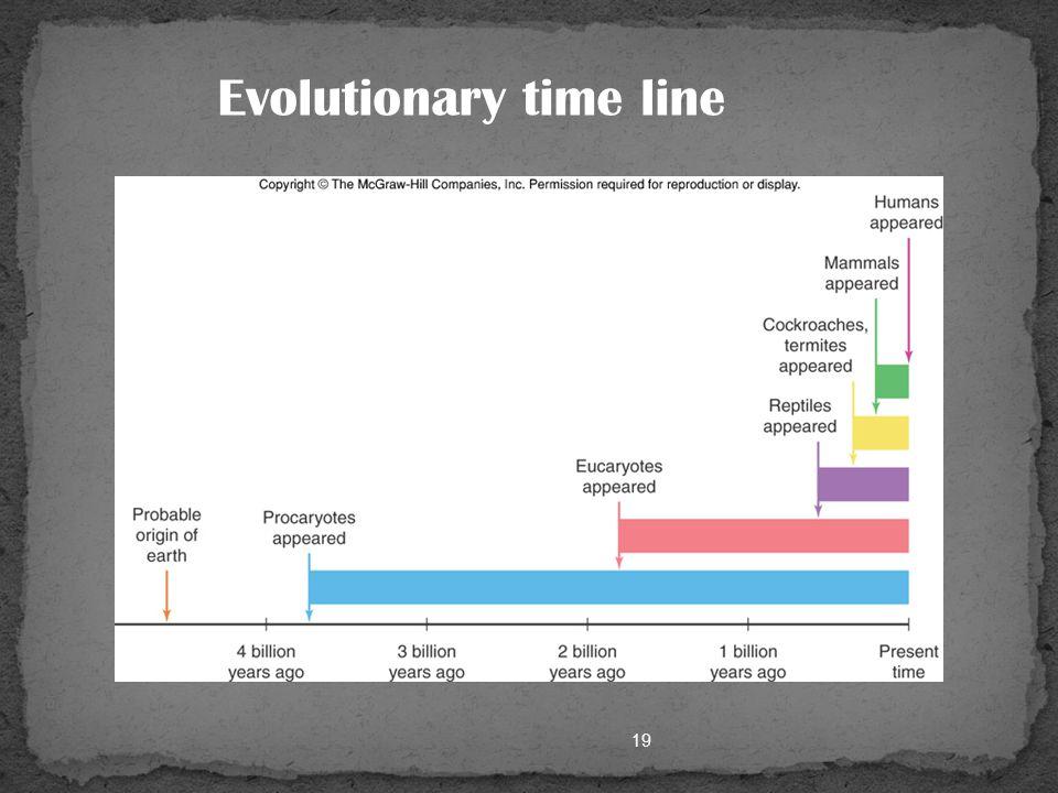 Unit fundamental dan fungsional kehidupan (SEL ADALAH BENDA HIDUP TERKECIL) Semua organisme tersusun dari sel (SEL ADALAH PENYUSUN DASAR KEHIDUPAN) Sel berasal dari sebelumnya