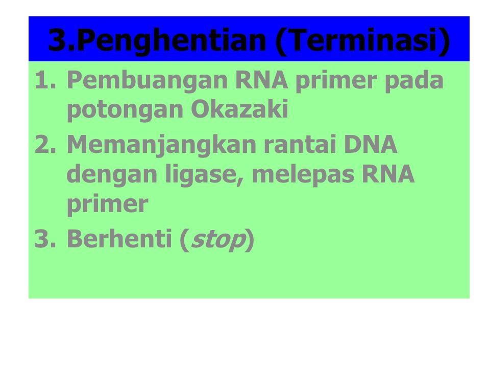 TRANSKRIPSI Transkripsi: Proses pembentukan RNA dari DNA Ada 3 macam bentuk RNA : 1.Messenger RNA (m-RNA) 2.Transfer RNA (t-RNA) 3.Ribosomal RNA (r-RNA)