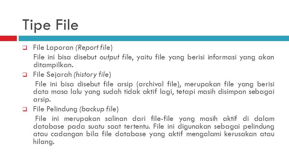  File Laporan (Report file) File ini bisa disebut output file, yaitu file yang berisi informasi yang akan ditampilkan.  File Sejarah (history file)