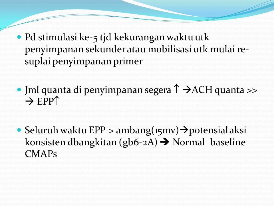 Pd stimulasi ke-5 tjd kekurangan waktu utk penyimpanan sekunder atau mobilisasi utk mulai re- suplai penyimpanan primer Jml quanta di penyimpanan segera   ACH quanta >>  EPP  Seluruh waktu EPP > ambang(15mv)  potensial aksi konsisten dbangkitan (gb6-2A)  Normal baseline CMAPs