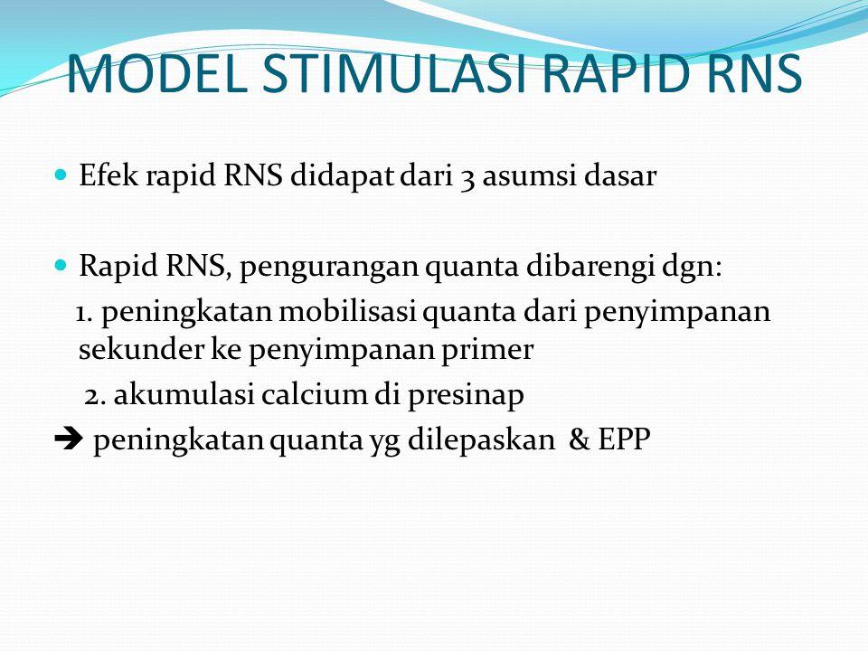 MODEL STIMULASI RAPID RNS Efek rapid RNS didapat dari 3 asumsi dasar Rapid RNS, pengurangan quanta dibarengi dgn: 1. peningkatan mobilisasi quanta dar