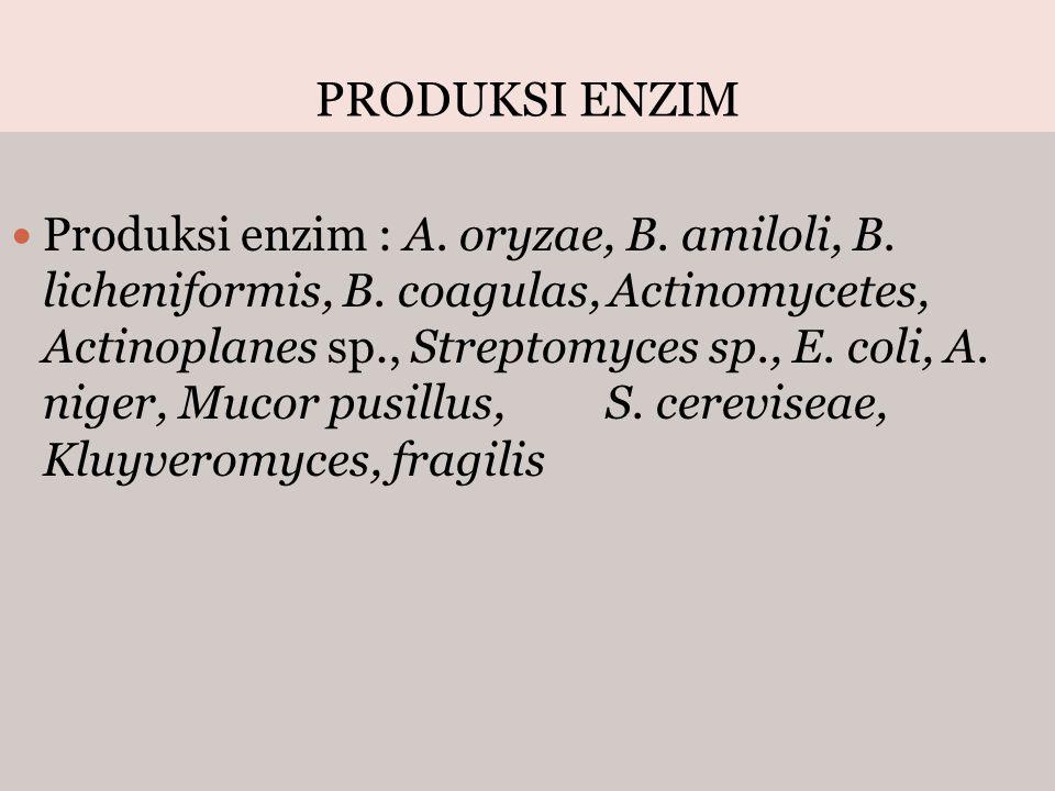 PRODUKSI ENZIM Produksi enzim : A. oryzae, B. amiloli, B. licheniformis, B. coagulas, Actinomycetes, Actinoplanes sp., Streptomyces sp., E. coli, A. n