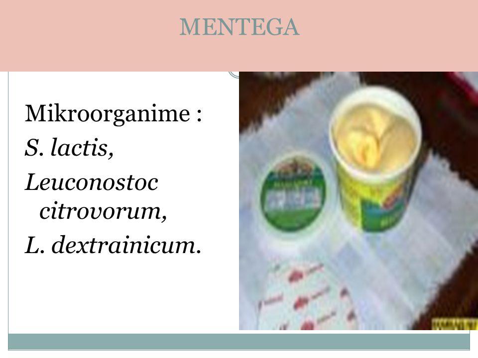 . MENTEGA Mikroorganime : S. lactis, Leuconostoc citrovorum, L. dextrainicum.
