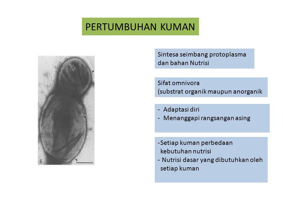 PERTUMBUHAN KUMAN Sintesa seimbang protoplasma dan bahan Nutrisi Sifat omnivora (substrat organik maupun anorganik -Adaptasi diri -Menanggapi rangsang