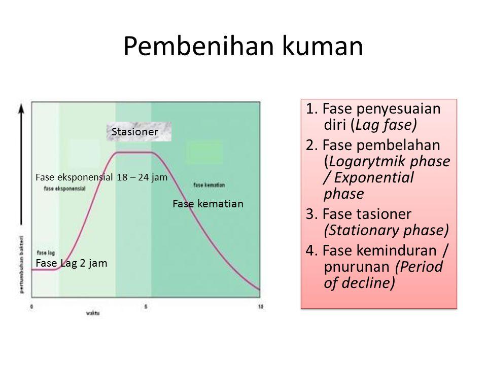Pembenihan kuman 1. Fase penyesuaian diri (Lag fase) 2. Fase pembelahan (Logarytmik phase / Exponential phase 3. Fase tasioner (Stationary phase) 4. F