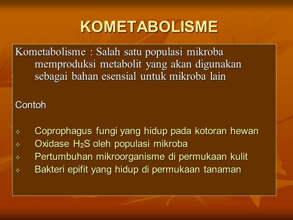 KOMETABOLISME Kometabolisme : Salah satu populasi mikroba memproduksi metabolit yang akan digunakan sebagai bahan esensial untuk mikroba lain Contoh 