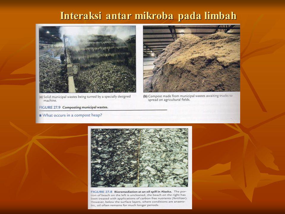 Interaksi antar mikroba pada limbah