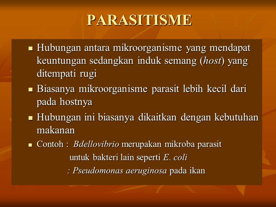 PARASITISME Hubungan antara mikroorganisme yang mendapat keuntungan sedangkan induk semang (host) yang ditempati rugi Hubungan antara mikroorganisme y
