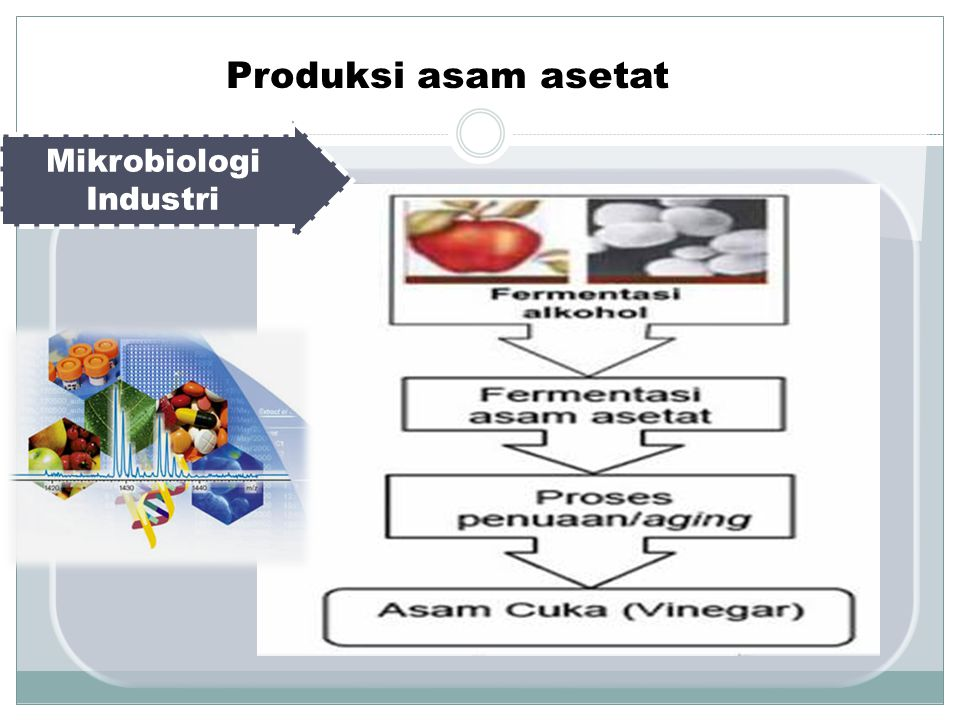Mikrobiologi Industri Produksi asam asetat