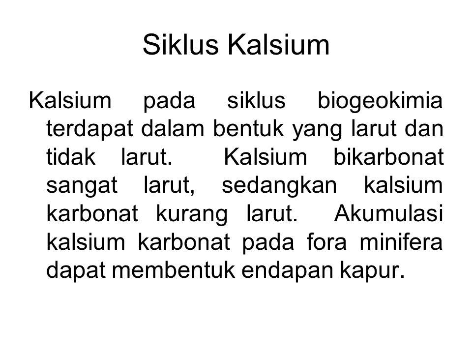 Kalsium pada siklus biogeokimia terdapat dalam bentuk yang larut dan tidak larut. Kalsium bikarbonat sangat larut, sedangkan kalsium karbonat kurang l