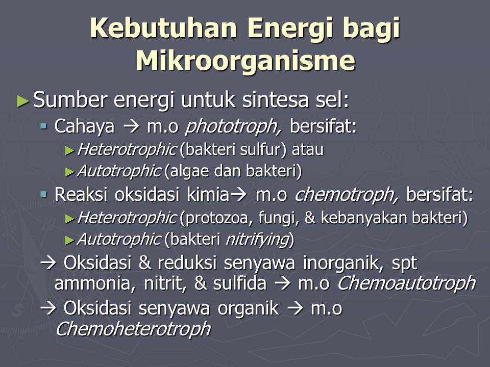 Kebutuhan Energi bagi Mikroorganisme ► Sumber energi untuk sintesa sel:  Cahaya  m.o phototroph, bersifat: ► Heterotrophic (bakteri sulfur) atau ► A