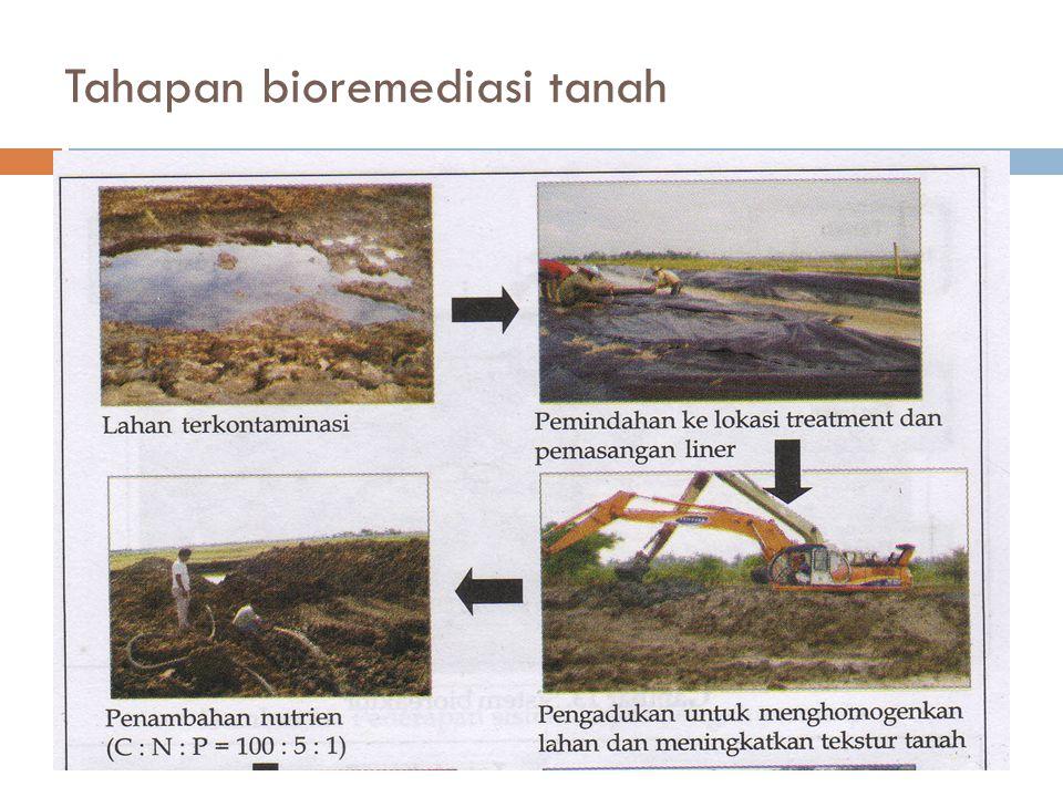 Tahapan bioremediasi tanah