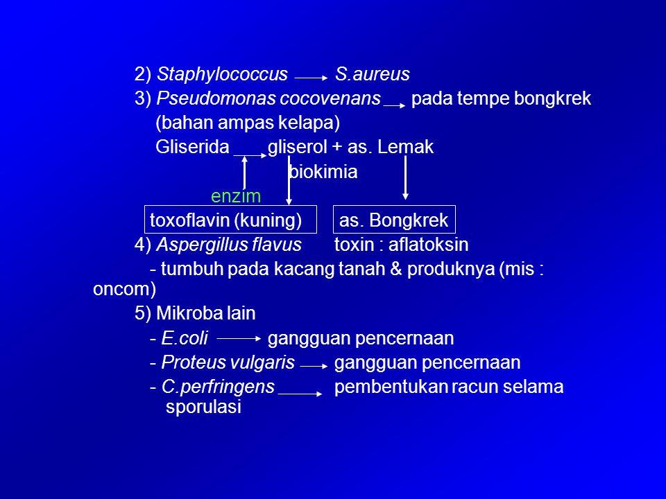 2) StaphylococcusS.aureus 3) Pseudomonas cocovenans pada tempe bongkrek (bahan ampas kelapa) Gliseridagliserol + as. Lemak biokimia enzim toxoflavin (