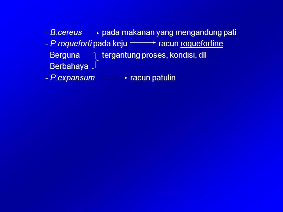 - B.cereuspada makanan yang mengandung pati - P.roqueforti pada kejuracun roquefortine Bergunatergantung proses, kondisi, dll Berbahaya - P.expansumra