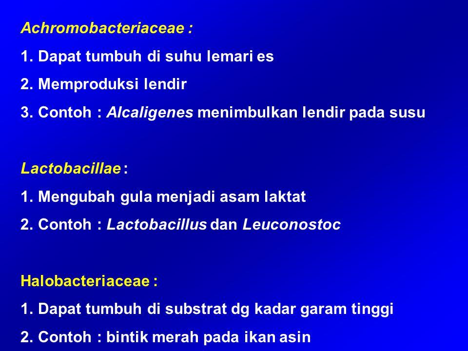 Achromobacteriaceae : 1.Dapat tumbuh di suhu lemari es 2.Memproduksi lendir 3.Contoh : Alcaligenes menimbulkan lendir pada susu Lactobacillae : 1.Meng