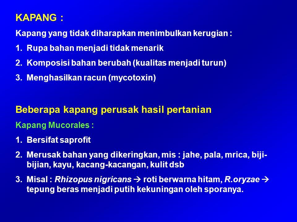  Infeksi 1) Salmonellosis oleh Salmonella sp (parasit pada usus manusia).
