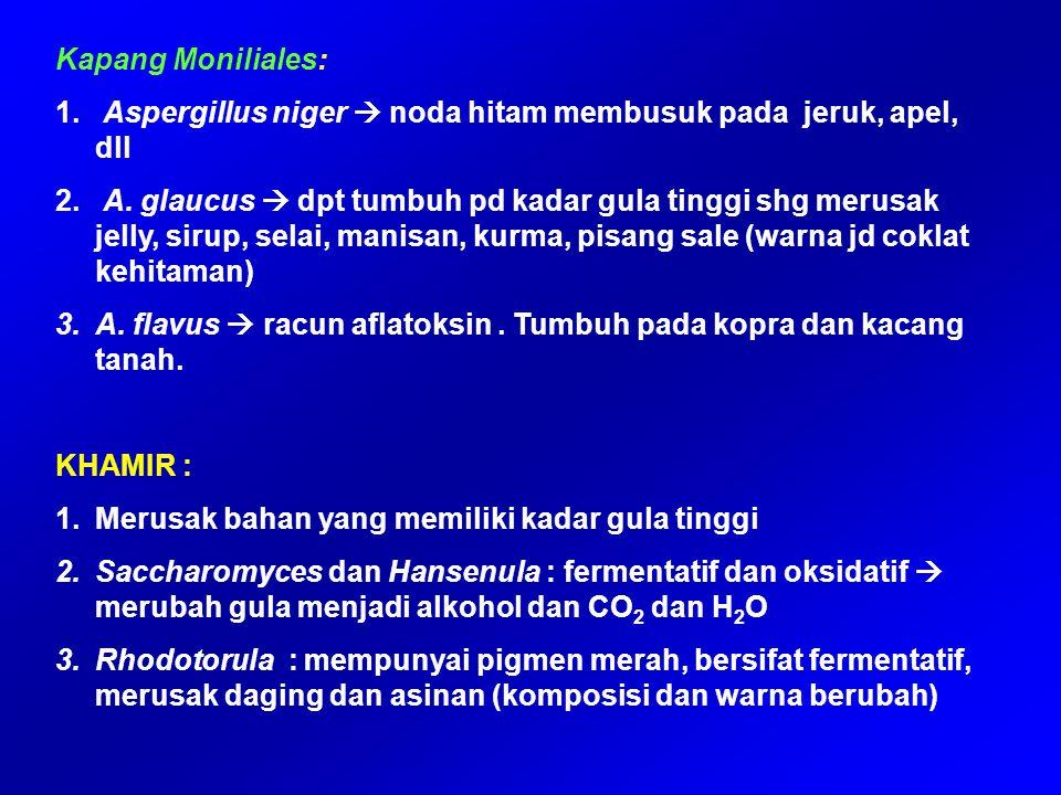 2) StaphylococcusS.aureus 3) Pseudomonas cocovenans pada tempe bongkrek (bahan ampas kelapa) Gliseridagliserol + as.