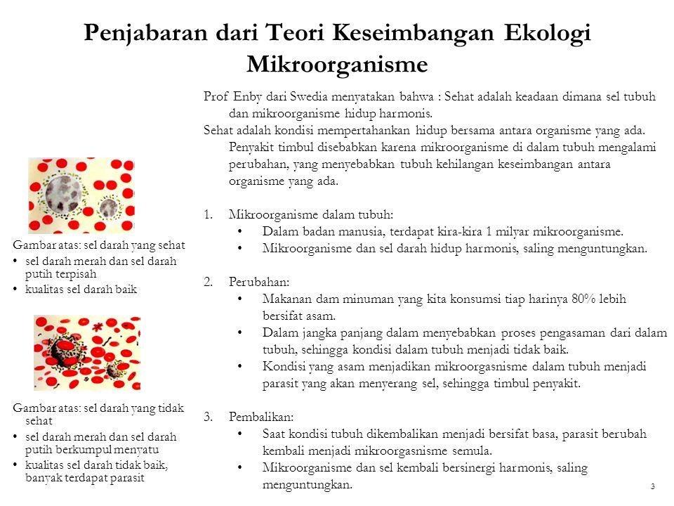 Penjabaran dari Teori Keseimbangan Ekologi Mikroorganisme Gambar atas: sel darah yang sehat sel darah merah dan sel darah putih terpisah kualitas sel