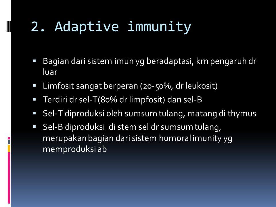 2. Adaptive immunity  Bagian dari sistem imun yg beradaptasi, krn pengaruh dr luar  Limfosit sangat berperan (20-50%, dr leukosit)  Terdiri dr sel-