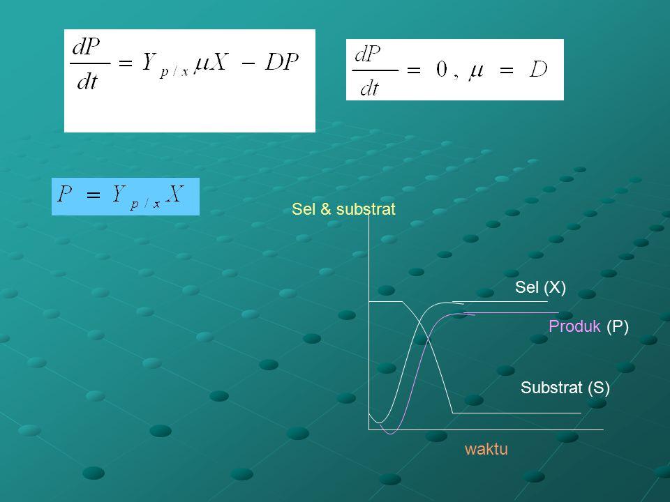 waktu Sel & substrat Substrat (S) Sel (X) Produk (P)