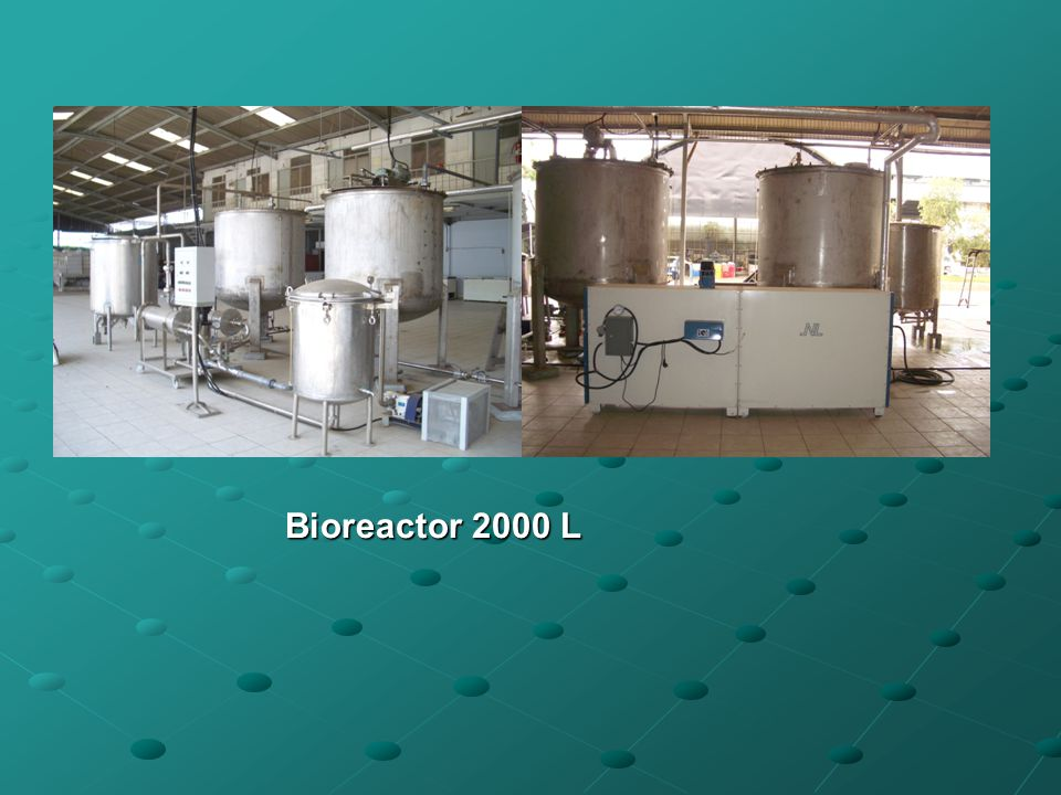 Bioreactor 2000 L