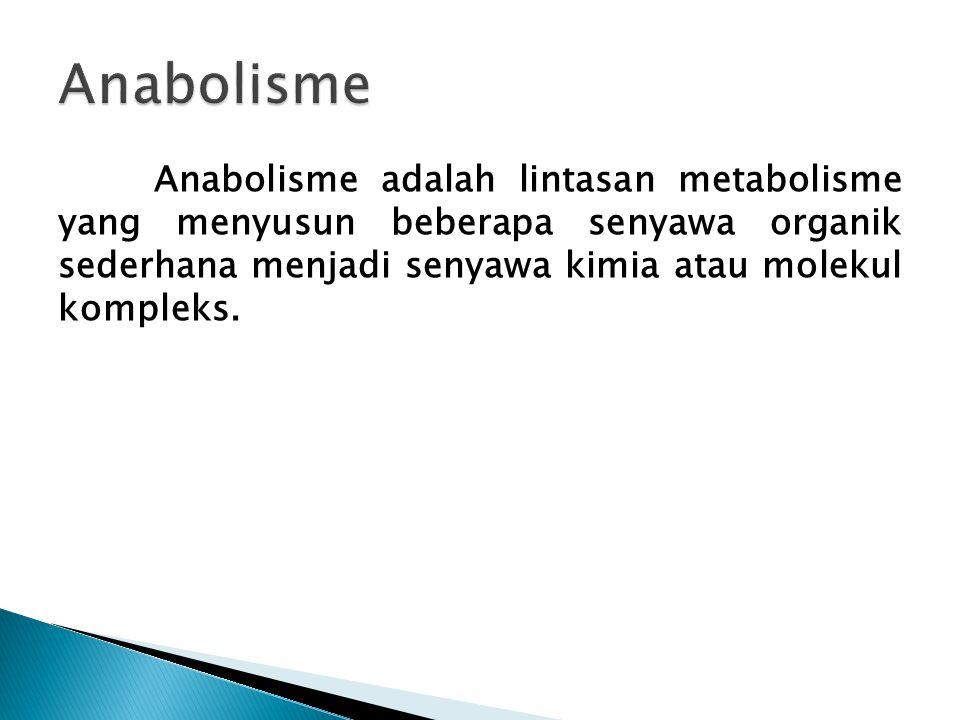 Anabolisme adalah lintasan metabolisme yang menyusun beberapa senyawa organik sederhana menjadi senyawa kimia atau molekul kompleks.