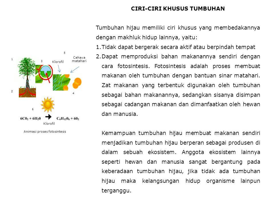 CIRI-CIRI KHUSUS TUMBUHAN Tumbuhan hijau memiliki ciri khusus yang membedakannya dengan makhluk hidup lainnya, yaitu: 1.Tidak dapat bergerak secara aktif atau berpindah tempat 2.Dapat memproduksi bahan makanannya sendiri dengan cara fotosintesis.