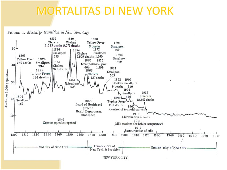 MORTALITAS DI NEW YORK Figure 1