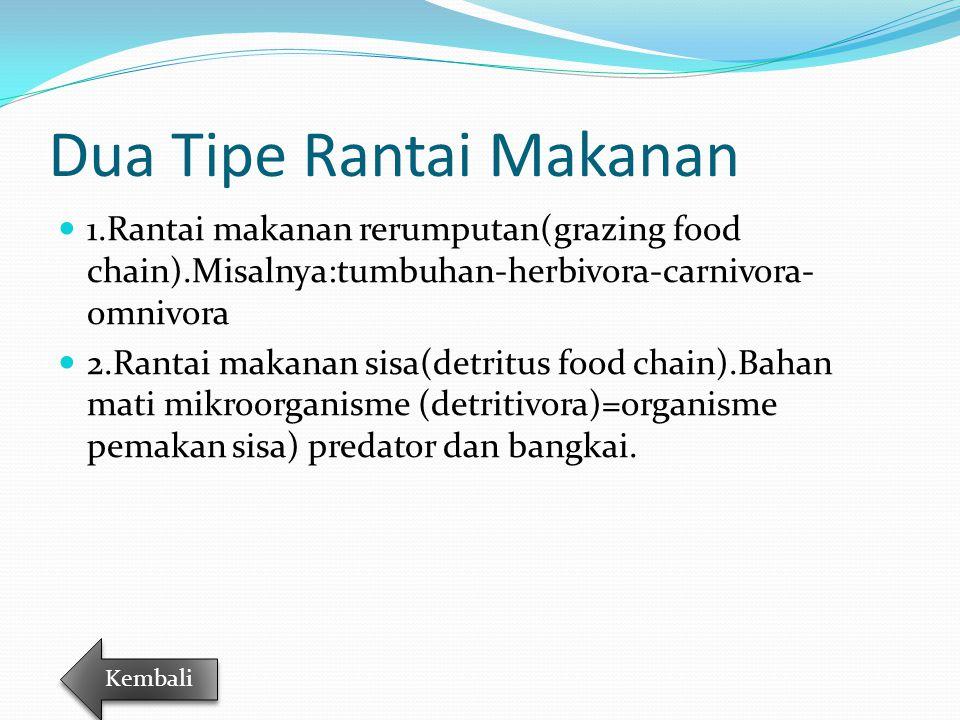 Dua Tipe Rantai Makanan 1.Rantai makanan rerumputan(grazing food chain).Misalnya:tumbuhan-herbivora-carnivora- omnivora 2.Rantai makanan sisa(detritus