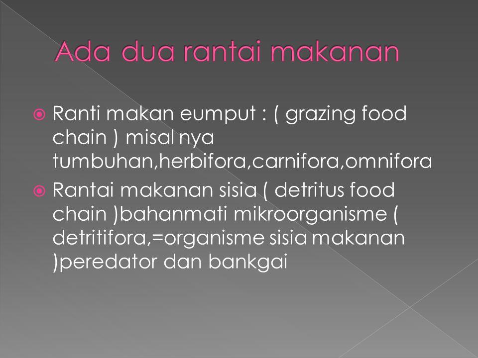  Ranti makan eumput : ( grazing food chain ) misal nya tumbuhan,herbifora,carnifora,omnifora  Rantai makanan sisia ( detritus food chain )bahanmati mikroorganisme ( detritifora,=organisme sisia makanan )peredator dan bankgai