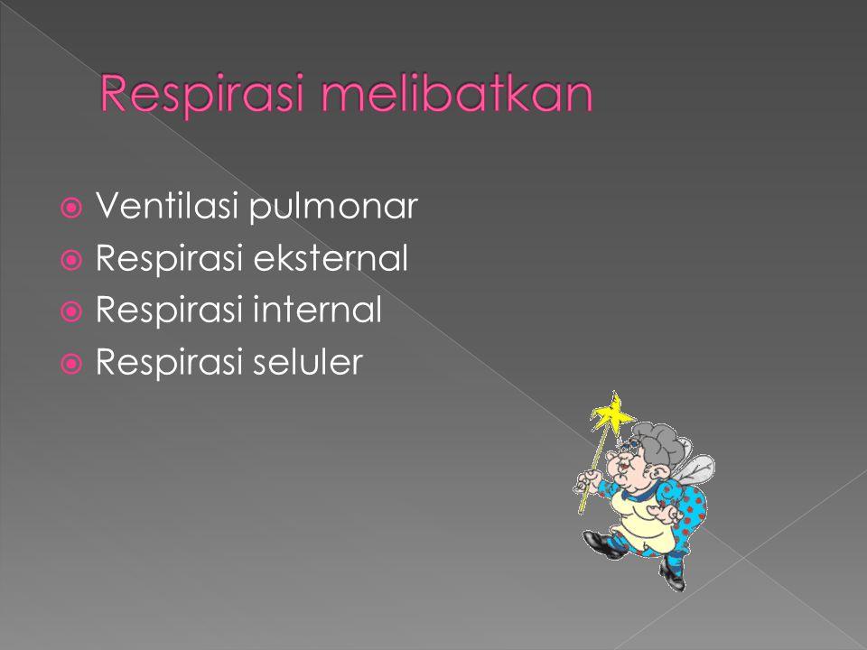  Ventilasi pulmonar  Respirasi eksternal  Respirasi internal  Respirasi seluler