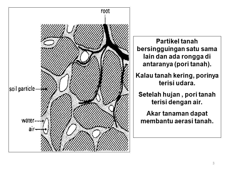3 Partikel tanah bersingguingan satu sama lain dan ada rongga di antaranya (pori tanah). Kalau tanah kering, porinya terisi udara. Setelah hujan, pori