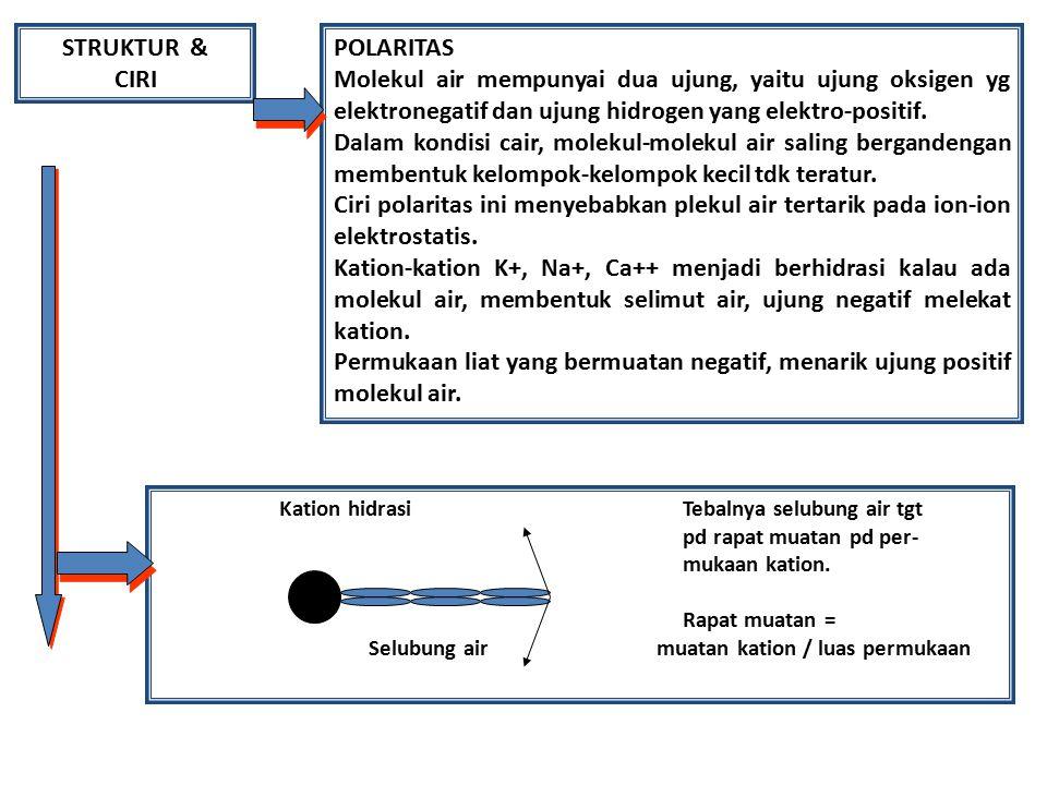 STRUKTUR & CIRI POLARITAS Molekul air mempunyai dua ujung, yaitu ujung oksigen yg elektronegatif dan ujung hidrogen yang elektro-positif. Dalam kondis
