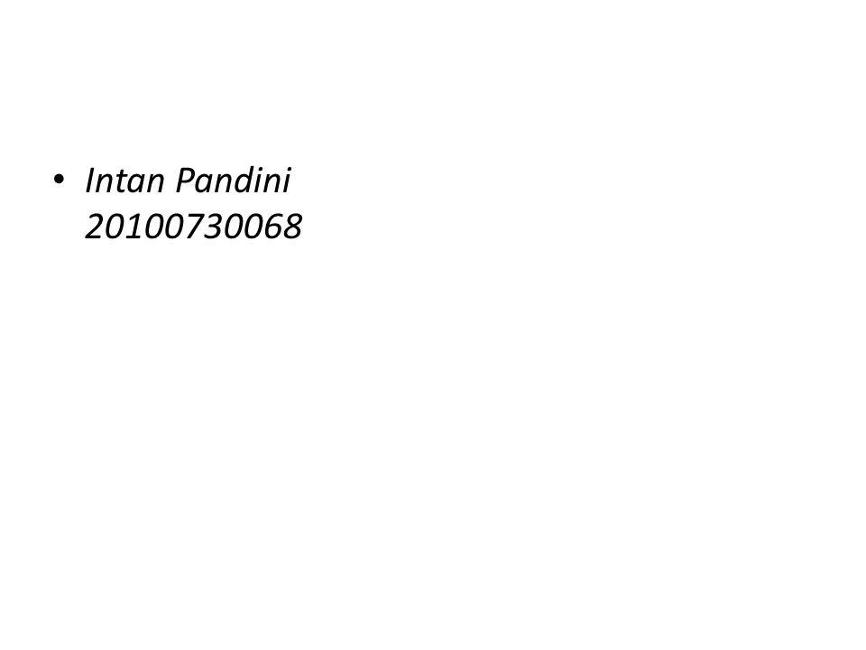 Intan Pandini 20100730068