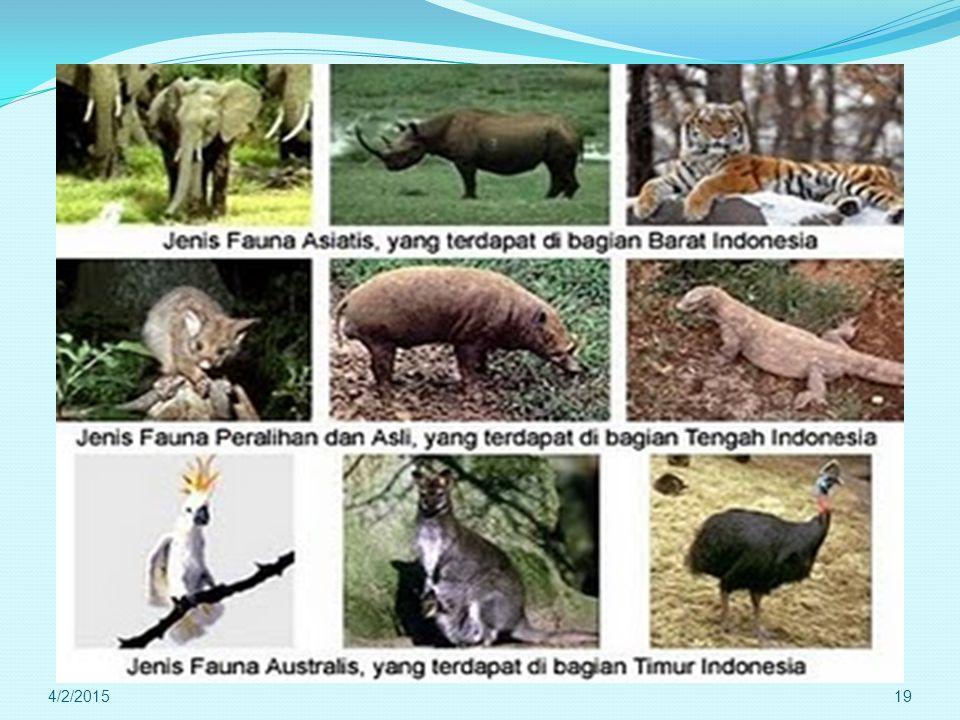 Fenomena di Biosfer : * Persebaran Fauna dan Flora di permukaan bumi. 4/2/201518