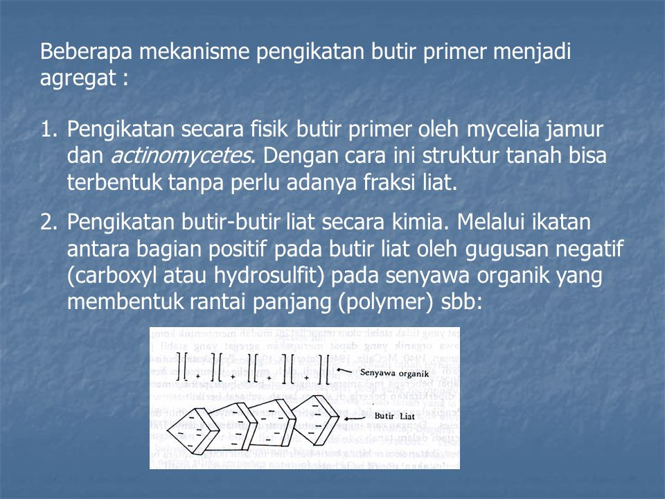Beberapa mekanisme pengikatan butir primer menjadi agregat : 1.Pengikatan secara fisik butir primer oleh mycelia jamur dan actinomycetes. Dengan cara