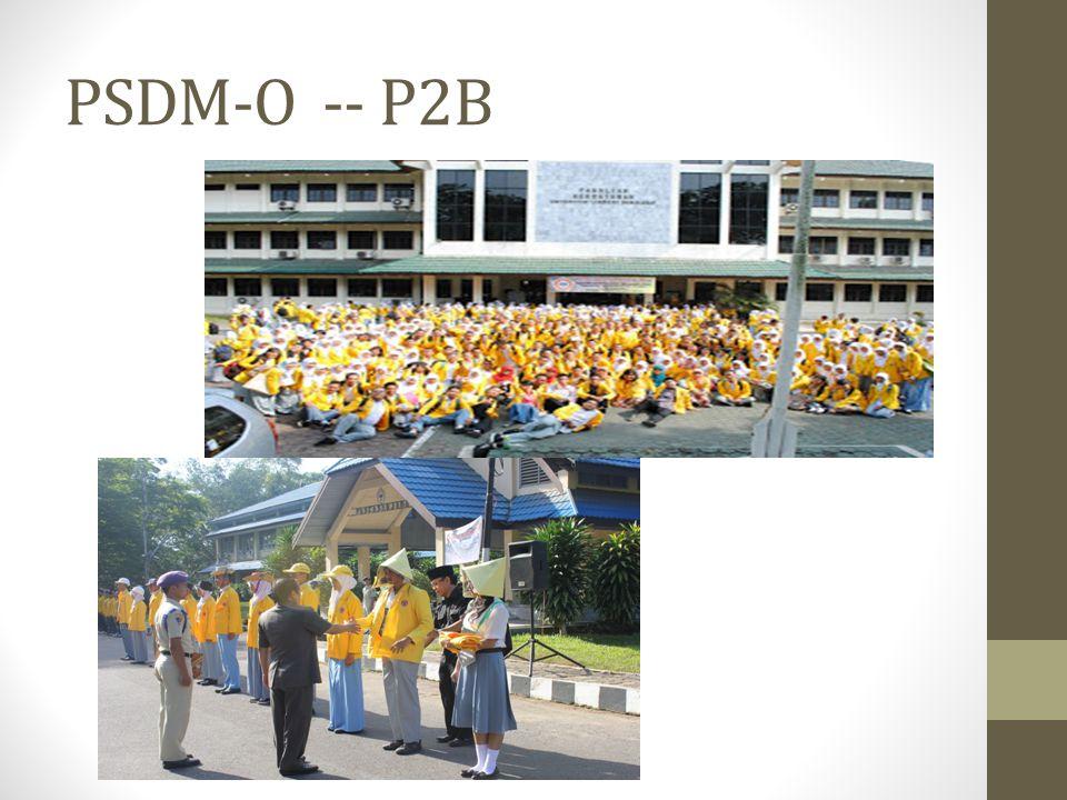 PSDM-O -- P2B