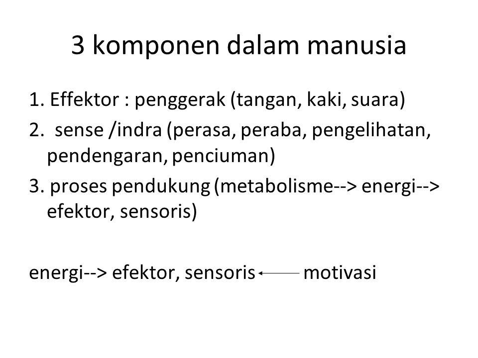 3 komponen dalam manusia 1. Effektor : penggerak (tangan, kaki, suara) 2. sense /indra (perasa, peraba, pengelihatan, pendengaran, penciuman) 3. prose
