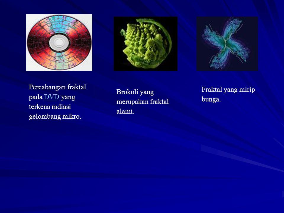 Percabangan fraktal pada DVD yang terkena radiasi gelombang mikro.DVD Brokoli yang merupakan fraktal alami. Fraktal yang mirip bunga.